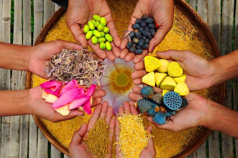 Samatao tea lounge lotus products