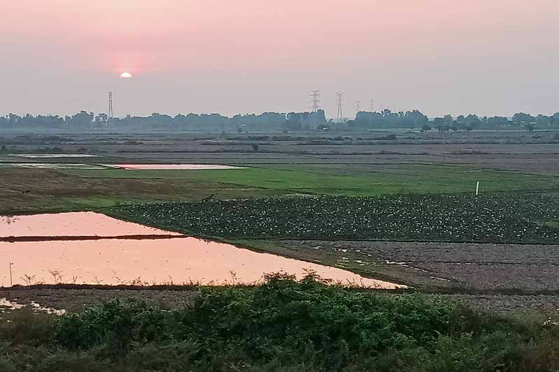 Sunset over the lotus fields